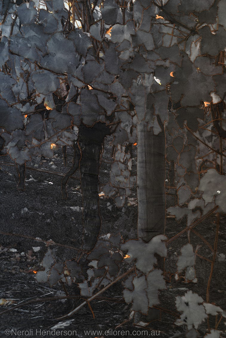 Glimmer by Neroli Henderson2